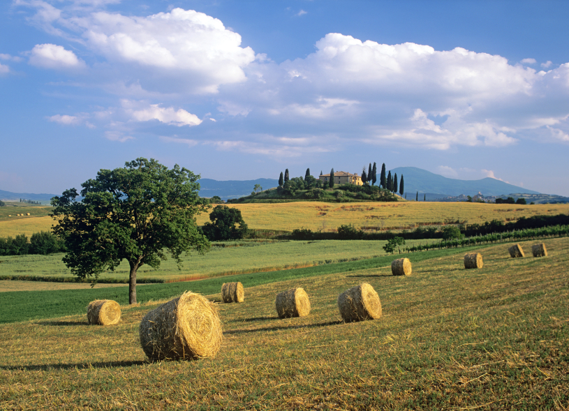 campagna-bb-at-home-in-maremma