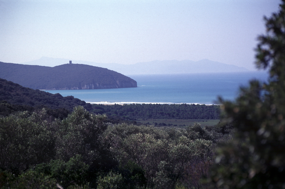 parco-uccellina-bb-at-home-in-maremma